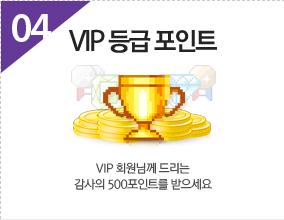 VIP 등급포인트