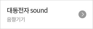 대동전자 sound 음향기기